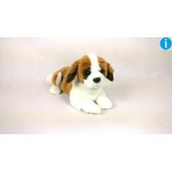 Pies leżący bernardyn  31cm