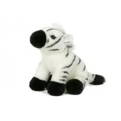 zebra 23cm