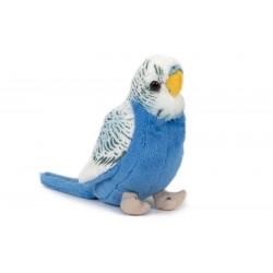 Papuga niebieska 14cm