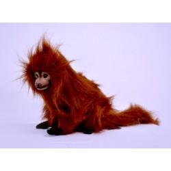 Małpa lwiatka 30cm