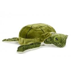 Żółw 51cm