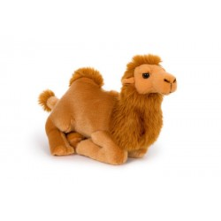Wielbłąd 30cm