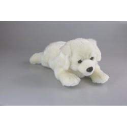 Pies retriver pacynka 32cm
