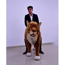 Tygrys szablozębny 170cm