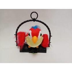 Papuga gadająca