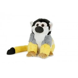 małpa kapucynka 13cm