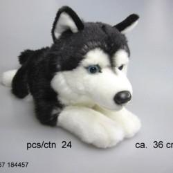 Pies husky ciemny 36cm
