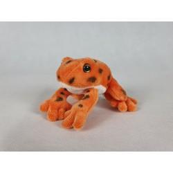 Żaba pomarańczowa z...