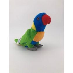 Papuga lorysa górska 20cm