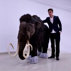 Mamut 225cm