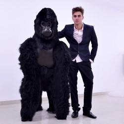 Małpa goryl 170cm