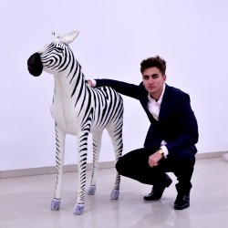 Zebra 100cm