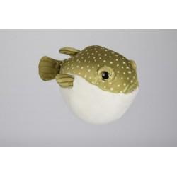 Ryba fugu 16cm